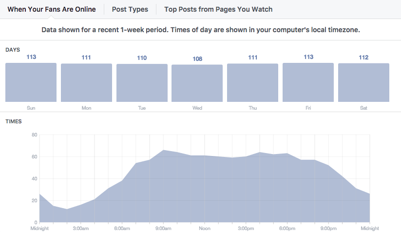 Facebook Insights Screenshot - Audience
